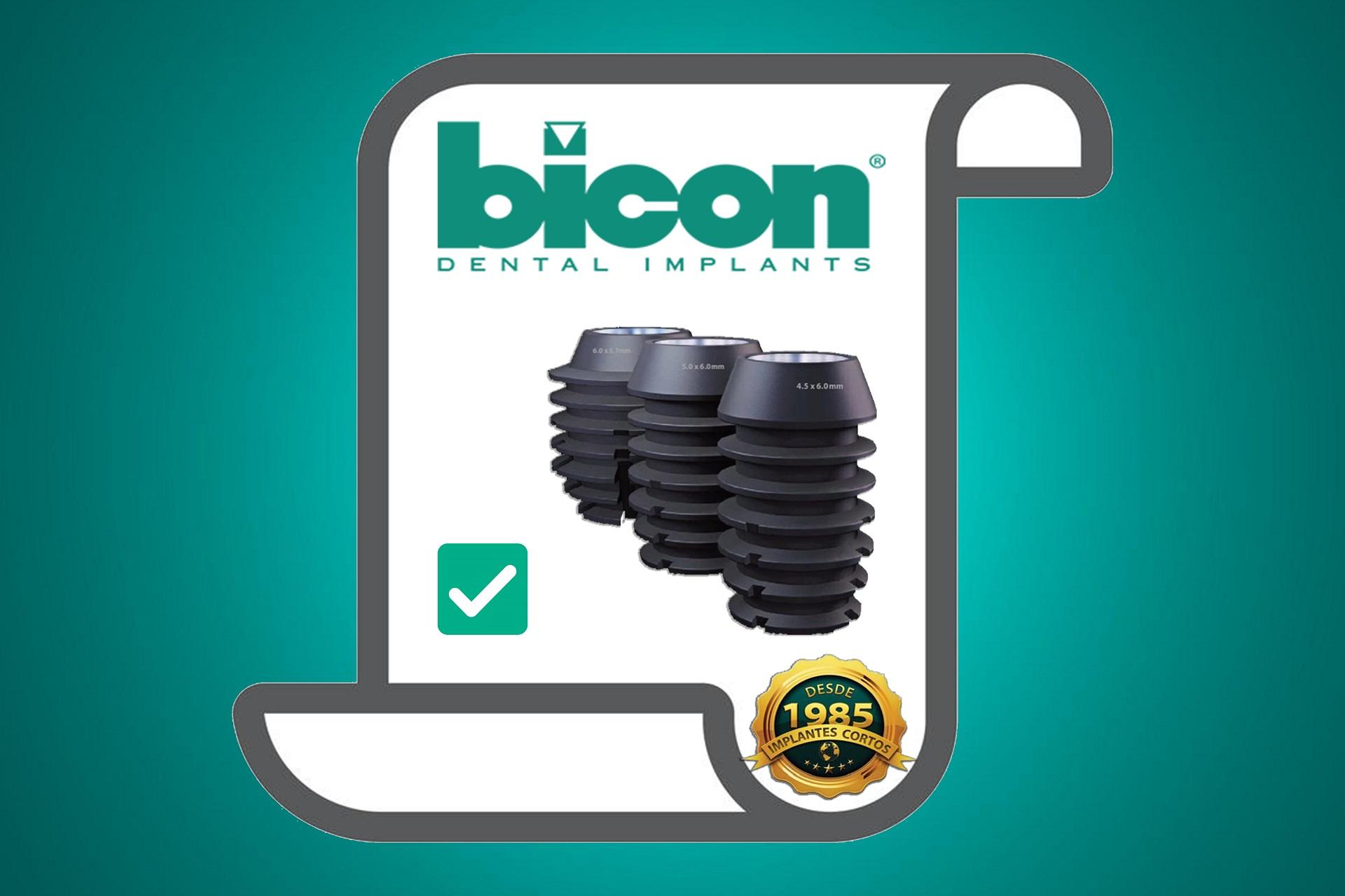 https://biconmexico.com/wp-content/uploads/2021/04/10.jpg